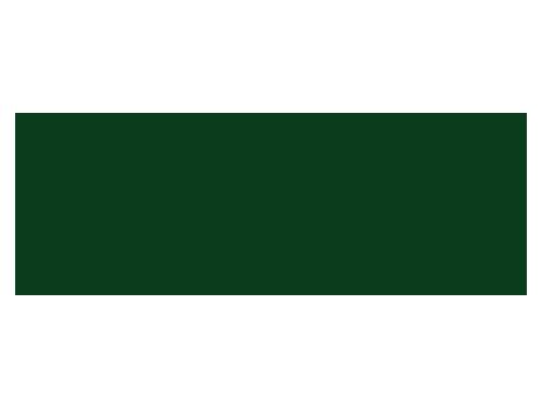 13-scienza-e-natura